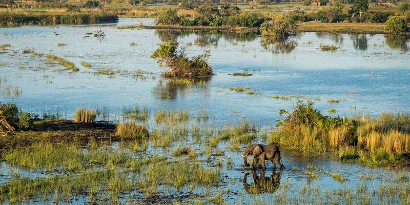 Wilderness Safaris commences rebuild of flagship camps