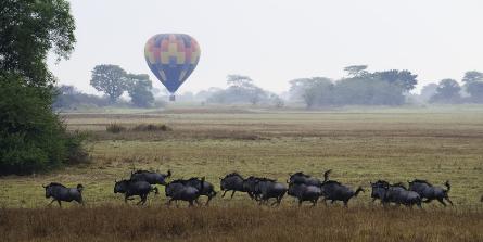 Remote but animal-rich Kafue makes tourism gains